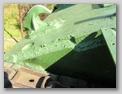 Соединение борта и верхней лобовой детали корпуса танка