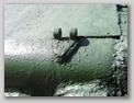 Петля  откидного кормового листа